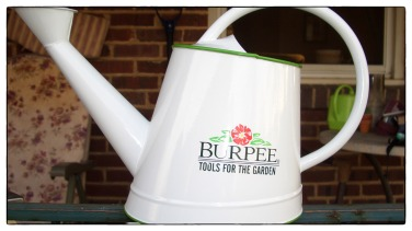 Reference photograph of the Burpee pot