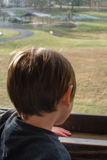 Simon looking out window, enjoying the ride.